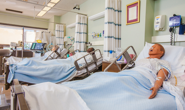 Nyu Online Nursing Degree Programs