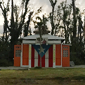 Star Athlete Reflects on Hurricane Maria's Destruction of Her Island Home